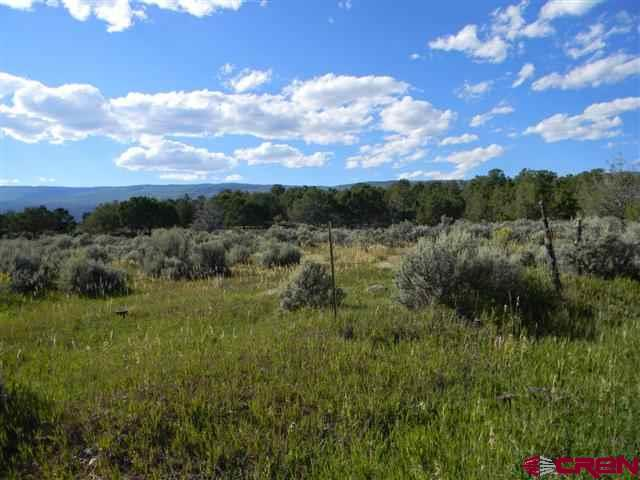 """3.62 Acres of Prime Mountain Building Site just North of Cedaredge! This has Everything you want!—Incredible Mountain Views, Paid Water Tap, Irrigation Water, Cleared Plus Trees, Corner Lot with Paved Year-Round Road with Easy Access. Come build your Colorado Mountain Dream Home at the foot of Grand Mesa where Hunting, Fishing, Skiing, Snowmobiling, ATV'ing, Hiking, Biking and More abound!  Leave the Maddening Crowd behind and Come to where Quality of Lifestyle just doesn't get any better than this! <a href=http://www.listingsmagic.com/158228 target=""""_blank""""><b>Click here for virtual tour</b></a>"""