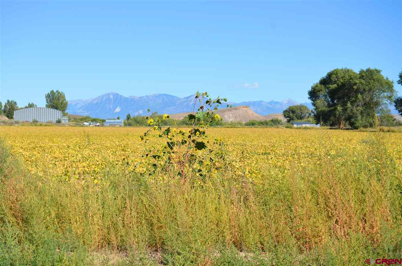"""17.62 Beautiful irrigated acres in Austin ready for your dream home or continue growing crops on it the choice would be yours. There is a water tap already paid for just not installed that goes with this property. Amazing views are also another plus about this particular parcel. Currently leased. <a href=http://www.listingsmagic.com/159128 target=""""_blank""""><b>Click here for virtual tour</b></a>"""