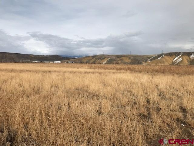 Prime 24 plus acres is ready for your choice of crops, plenty of room for livestock, with a creek running through the back portion of the property.  Come check out this property with nice views in every direction.  Great central location for an easy commute to anywhere in Delta County and more. OCID 15.8 acre feet, Butte Ditch 15.3 shares, 18 irrigated acres.