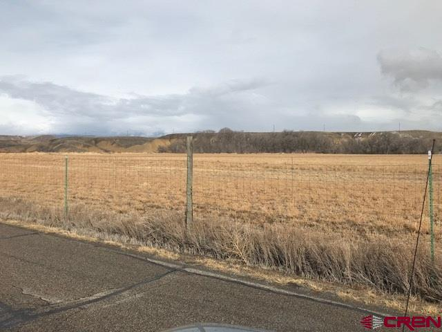 24 plus acres irrigated farmland with gated pipe and creek behind the backside of the property. Great views of the Grand Mesa.  Irrigated acreage and amount of irrigation is being verified by the listing agent.