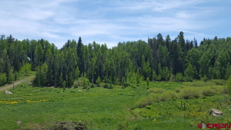 239 & 241 Spruce Glen