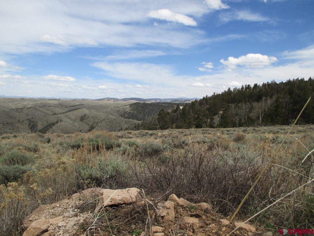 858 Mosquito Trail, Powderhorn, CO 81243