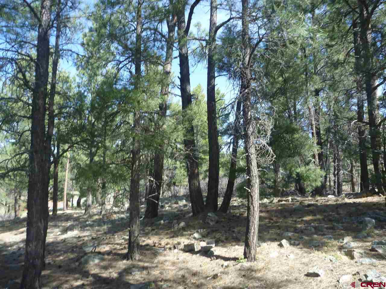1957 Lake Forest Circle