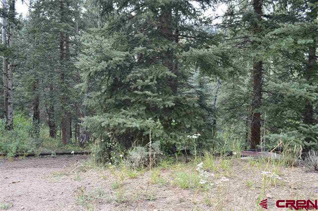 3605 Blue Mesa Drive, Powderhorn, CO 81243