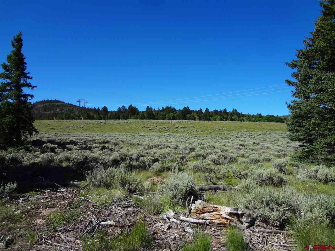 TBD Uncompahgre Trail, Powderhorn, CO 81243