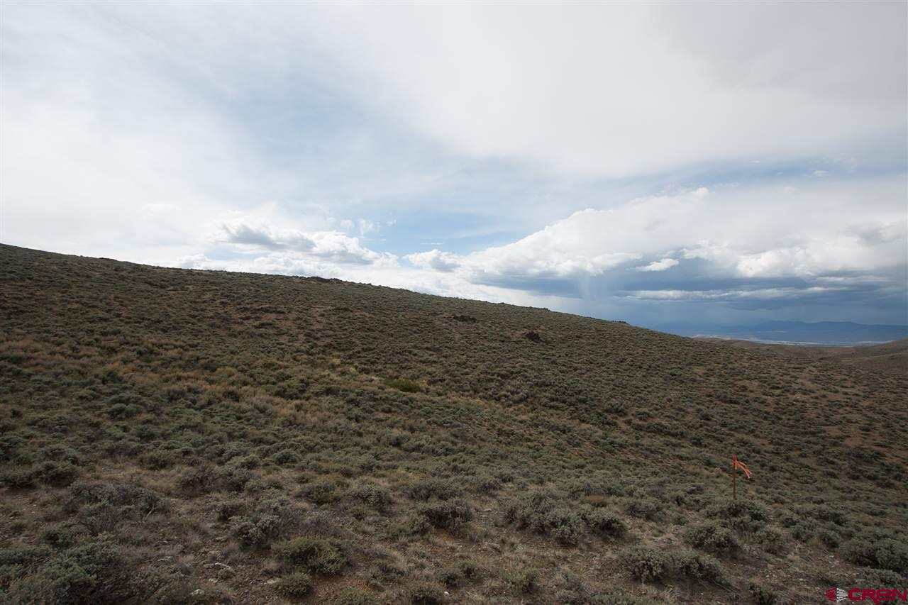 40 Ac off County Road 38, Gunnison, CO 81230