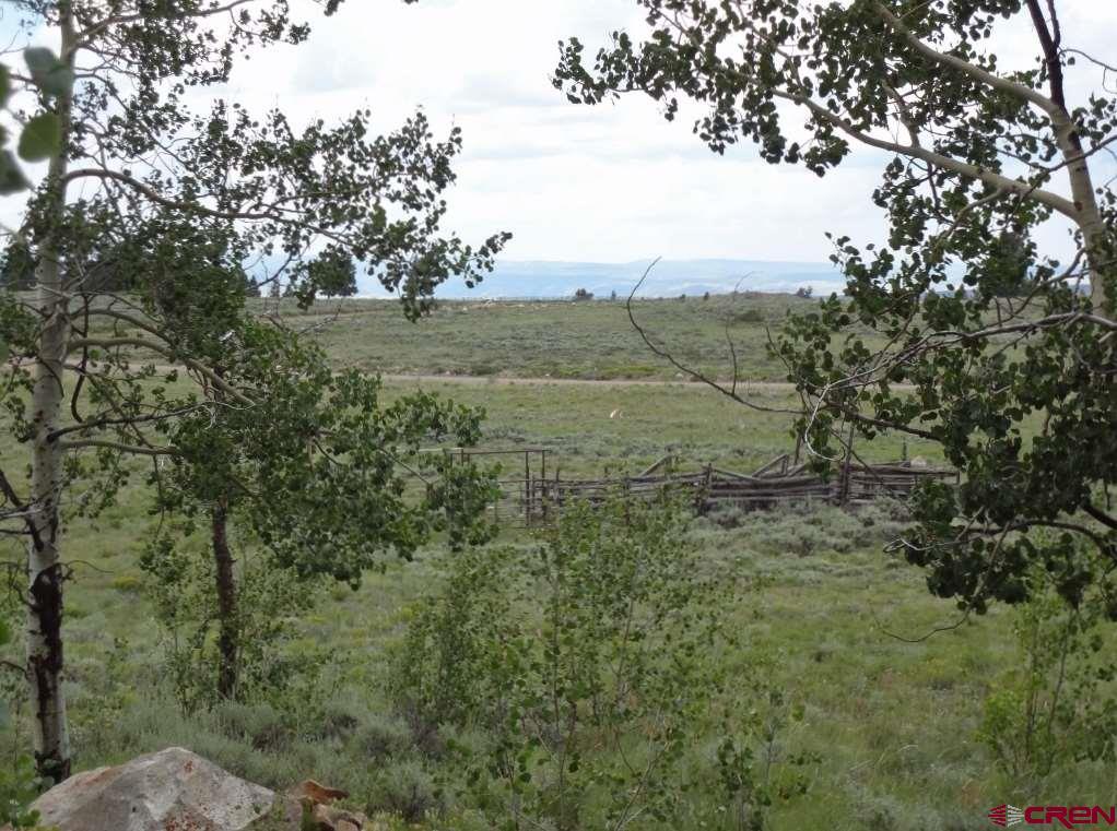 97 Blue Mesa Drive, Powderhorn, CO 81243