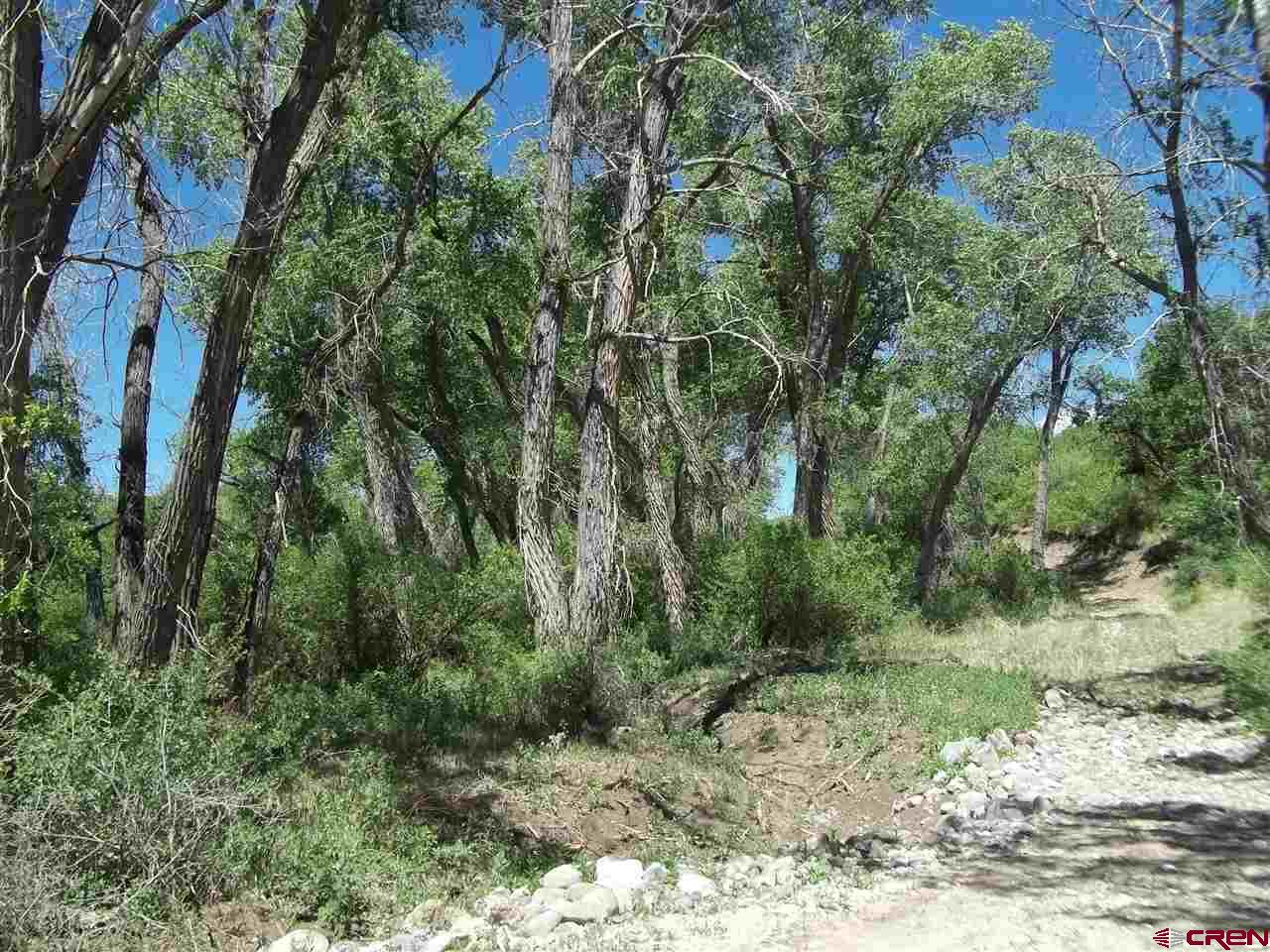 This parcel is located several miles behind locked gate.  The East Fork and the Middle Fork of Current flow through and join on this property.  There are lots of Cottonwood trees along the creeks the higher area of the property is sage brush with Cedar and Pinion Trees.  The property is joined by BLM to the West and North.  There is access to the USFS land to the North.  There are no utilities or domestic water available to the property.  This would make a great hunting property or summer get-a-way.  Please call for access.