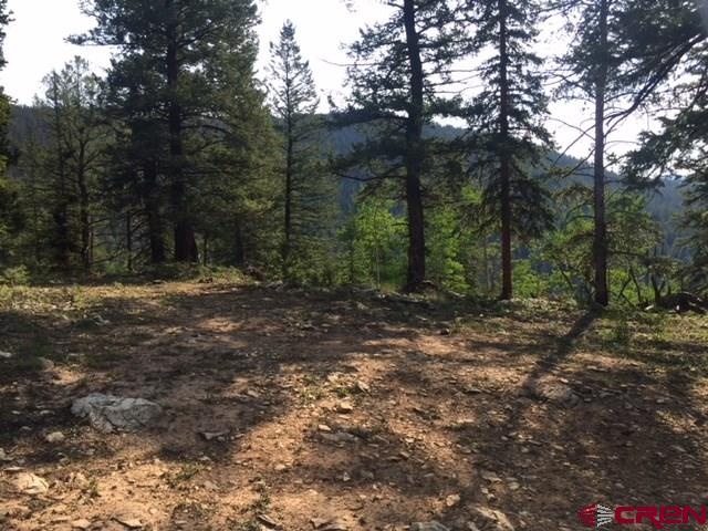 TBD USFS RD 770 Road, Pitkin, CO 81241