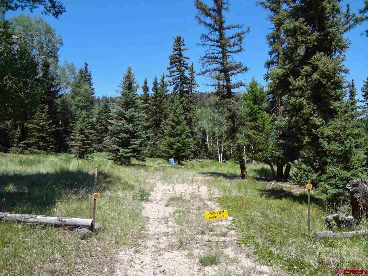 187 Cochetopa Trail, Powderhorn, CO 81243
