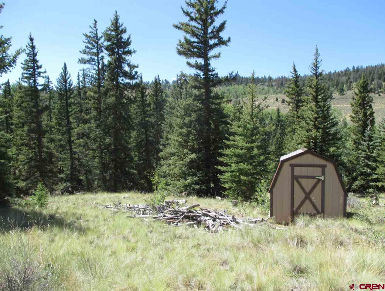 221 Cochetopa Trail, Powderhorn, CO 81243