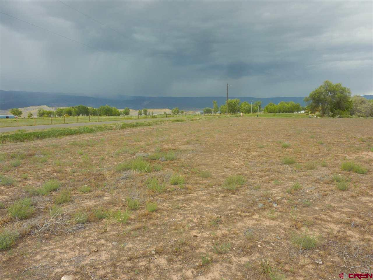 Beautiful building lot with views of Grand mesa and privacy from highway. Perfect topography for walk out basement or berm home. The lot goes to the center of creek with beautiful trees on the east side of the property.  This lot is special so take a look.  Irrigation includes 1/6 interest in Hal ditch, and 1/6 interest in its Priority #G-6 for 3.27 cfs.  Seller is willing to do owner financing with right terms.
