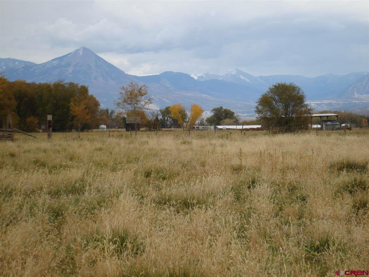 Pristine lot with plenty of irrigation water, sweeping views of West Elks. Domestic water tap is installed and paid for!! Nice, level lot ideal for livestock grazing. Very few rocks therefore easy on farm equipment. Build your dream home or farm with irrigation pipe and included.  Fully fenced with gated entry and paved road to the property. Just a few minutes from Hotchkiss with convenient shopping and services. This property is and active agricultural property that lends itself to many uses. Easy access to Highway 92 with lovely surrounding properties.