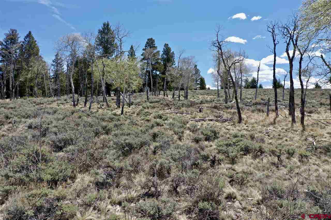 Lot 263 Blue Mesa Subdivision, Gunnison, CO 81230