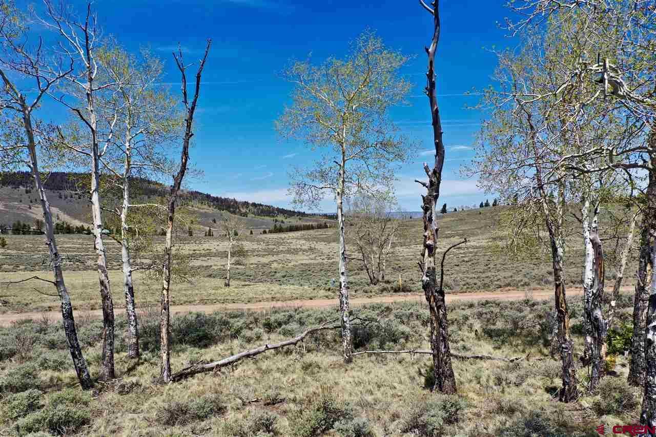 Lot 264 Blue Mesa Subdivision, Gunnison, CO 81230