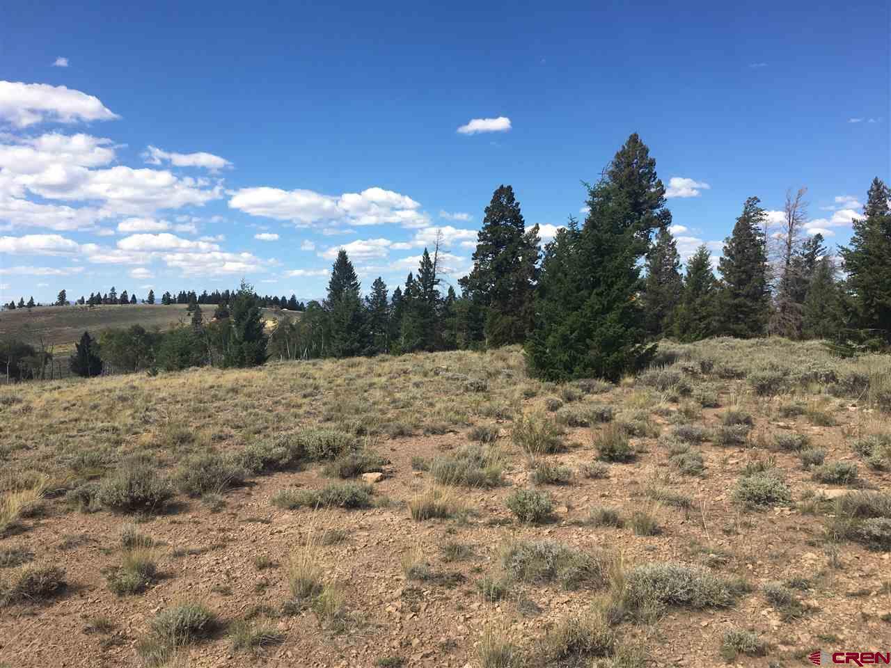 TBD Trailridge Trail, Gunnison, CO 81230
