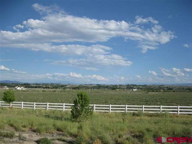 Incredible residential subdivision offering of 69.61 acres (MOL) with 32 large-estate lots and 2 outlots! Property is located on North Highway 50 between Delta and Grand Junction. Impressive panoramic views—Grand Mesa, West Elks, Uncompahgre Plateau and San Juans from each lot. Natural gas, electricity and phone utilities are installed to lot lines. Paved streets with lights and signs as well as fire hydrants, green way and park with basketball court in place. Each lot has piped irrigation to it. 75 shares North Delta Irrigation Company. Zoned A-1 within the City of Delta. Highway frontage makes for a well-situated subdivision, easy access to Delta and Grand Junction!  Incredible tax break with Opportunity Zone designation.