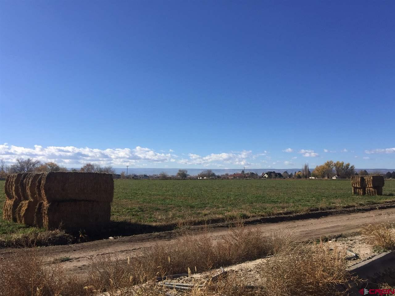 This is 16.88 acres of irrigated farmland with 19.1 shares of UVWUA, two paid, uninstalled, Tri County Water taps, is currently leased for farming but would be a great residential lot or a prime development property.  Located in the City of Delta close to schools and medical services.