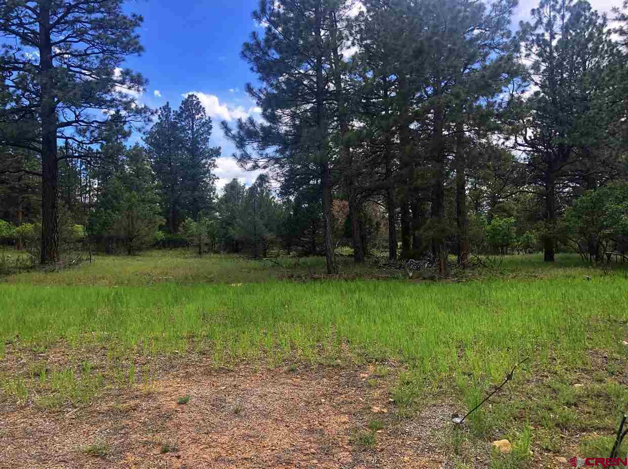 Elevate your lifestyle and build your dream home in Fairway Pines Estates at Divide Ranch.  This level and easy to build on lot is waiting for you!  Enjoy teeing off at the award winning 18 hole course with the San Juans all around.  Divide Ranch is situated atop Log Hill Mesa just minutes from downtown Ridgway, 30 minutes to Montrose, and 45 minutes to Telluride.  It is the perfect location for all your recreational activities.  Its just far enough away to feel the beauty, seclusion and peace that mountain living has to offer.  Where else can you buy property for such an amazing price?   Come see why this is considered one of Western Colorado's best kept secrets.