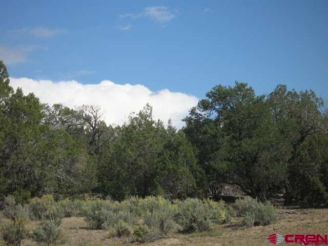 Amazingly beautiful tract of land. You must walk up the driveway to the back of the of the property and check out the views to the east. The LaPlata Mtn. Range is mirrored off of the adjoining land owners pond and views all around yet treed for privacy.:)