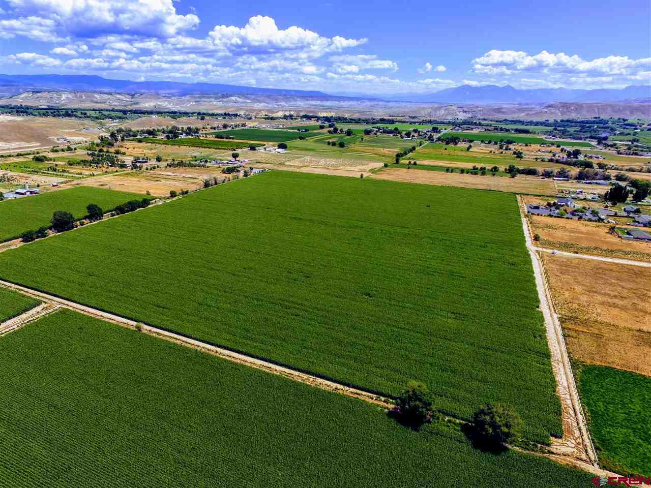 51+ ACRES OF PRIME IRRIGATED FARM GROUND! Tons of potential here for growing a number of different types of crops, including HEMP,HOPS, ORCHARD OR VINEYARD (currently in corn). Also has the excellent possibility of future Subdivision Development in an area that already has some very attractive Country Subdivisions & Homes. Gorgeous Views of the San Juans & the West Elks. Includes 900' of Gated Pipe, 50 Shares of Butte Ditch w/allocated OCID Irrigation and an Installed Orchard City Domestic Water Tap. Come build your Dream Home, Farm, Orchard, Ranch or whatever you want. Property is fenced on West & North Side & partial on South Side. There is an irrigation ditch that borders the East Side w/fencing along the other side of the ditch. Owner currently has an agreement with a tenant that irrigates & farms the land, so any growing crops at the time of sale would belong to the tenant, and new owner must honor the current lease agreement for the current season (a copy of the lease would be provided to a serious potential buyer. (Note: Any Subdivision Development of the land would be dependent on the availability of additional Orchard City Domestic Water Taps. Taps are currently available, however, Buyers should verify for themselves.)