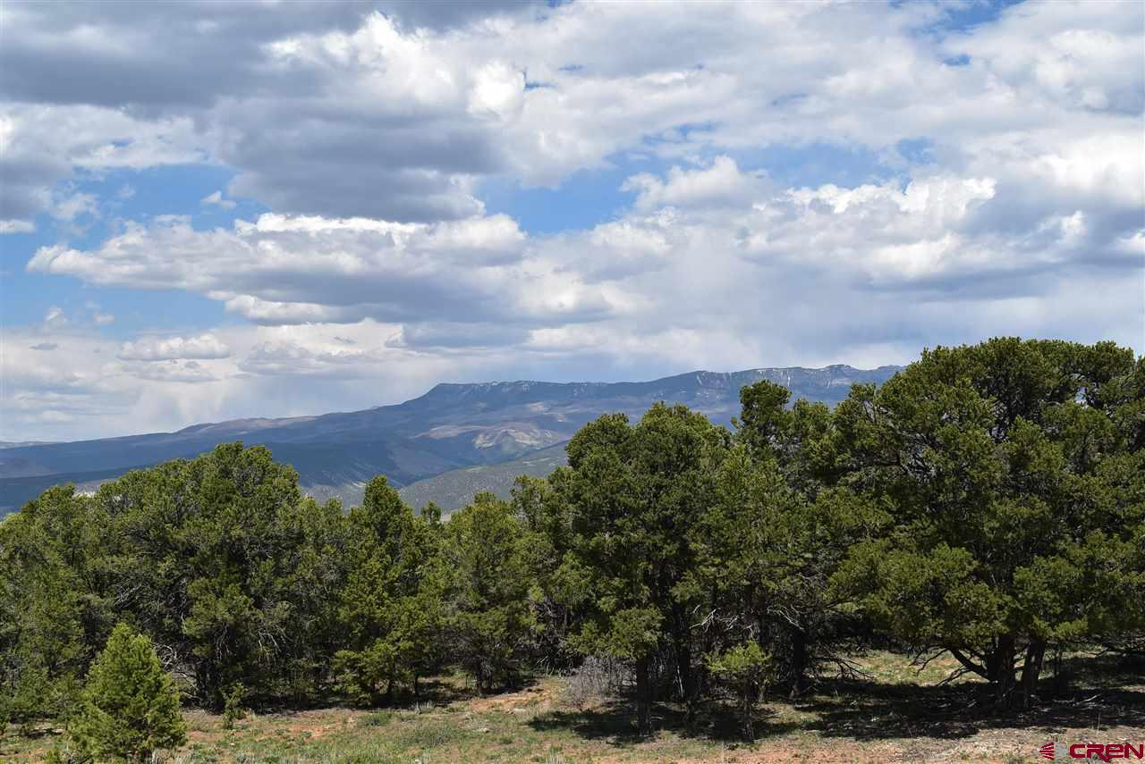 Large parcel on Log Hill with Cimarron Mountain views.  Paid water tap!  Good access and a slightly sloping grade will be easy to build on!  Healthy Pinon Pine trees on the property.  Mountain living at it's best!  45 minutes from World Class skiing in Telluride, 30 minutes from Montrose with a Regional airport and all the shopping you would ever need.  Call for a showing!