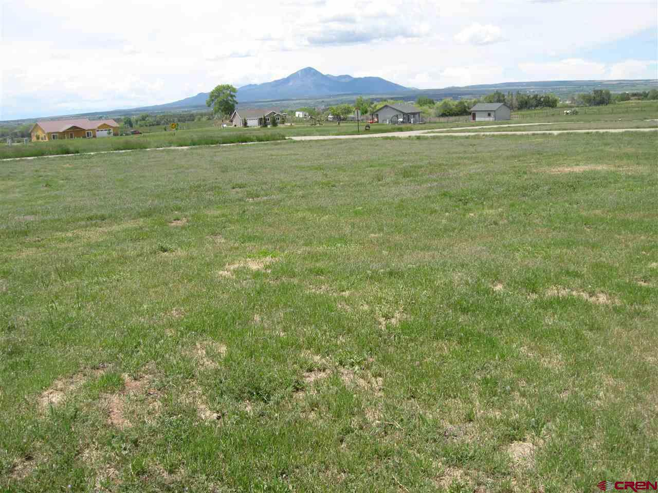 Nearly an acre sized lot with great views in an established subdivision in the county.  Priced to sell!  Lot has low taxes due to agriculture status.  County variance for set backs included with this lot. Irrigation water pipeline runs thru property (water shares not included with purchase of property, buyer must purchase and/or lease own shares).  All utilities can be accessed at the county road.