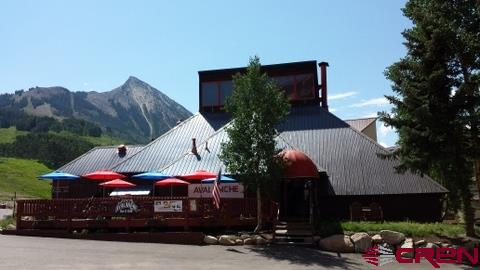 15 Emmons Loop, Mt. Crested Butte, CO 81225