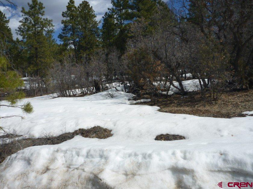 MLS# 755372 - 1 - 777  Justin's Road, Pagosa Springs, CO 81147