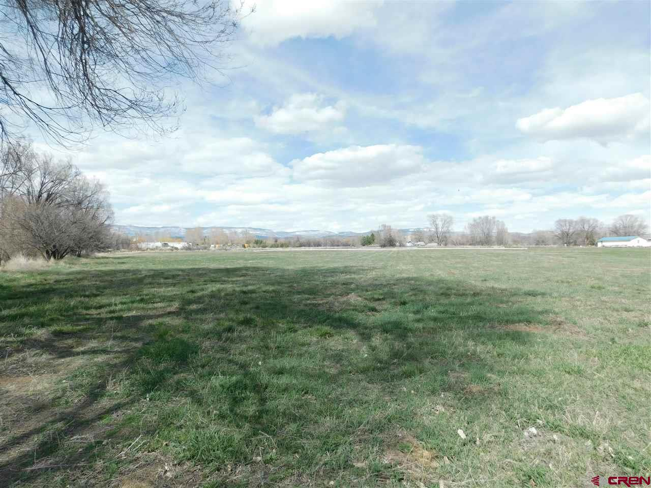 Wonderful opportunity for country living on this 6.31 acre parcel. Great Grand Mesa views. 7 Shares of Orchard City Irrigation District and 6 Shares of Butte Ditch plus a paid Town of Orchard City water tap. Located on a dead end road and in great proximity to Delta, Eckert or Cedaredge. Several mature trees border the property. The topography is mostly level and cleared. Some fencing already exists. No covenants on this property. Modular homes allowed. Come make your dreams a reality!