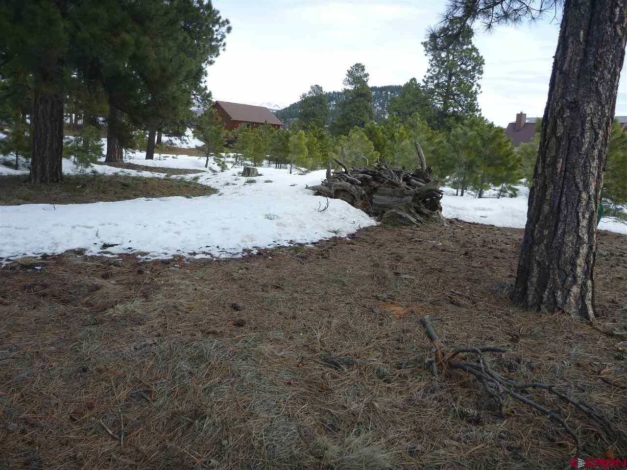 MLS# 755993 - 1 - 30 Croton Court, Pagosa Springs, CO 81147