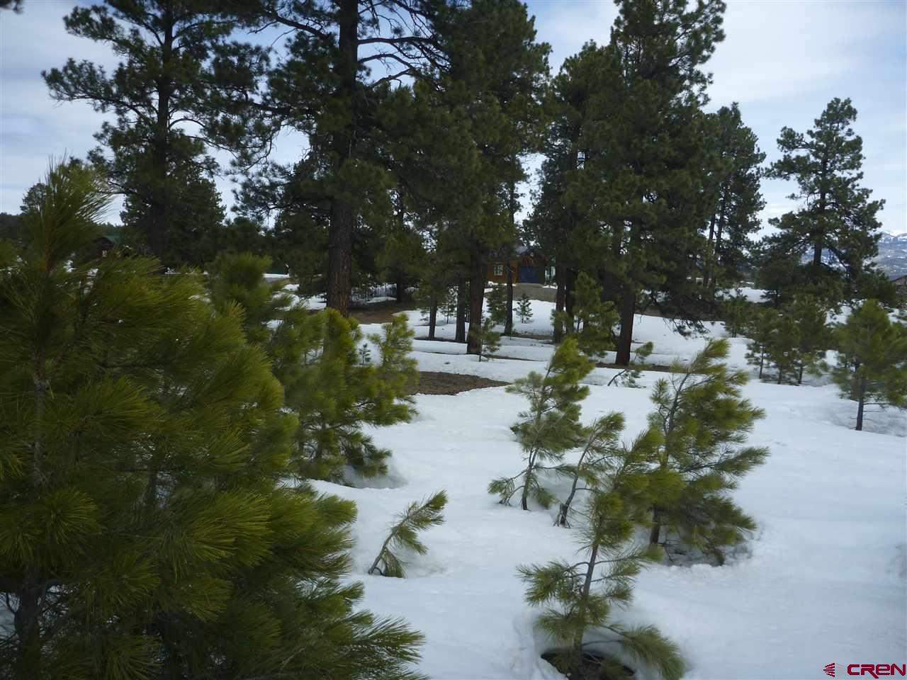 MLS# 755993 - 5 - 30 Croton Court, Pagosa Springs, CO 81147