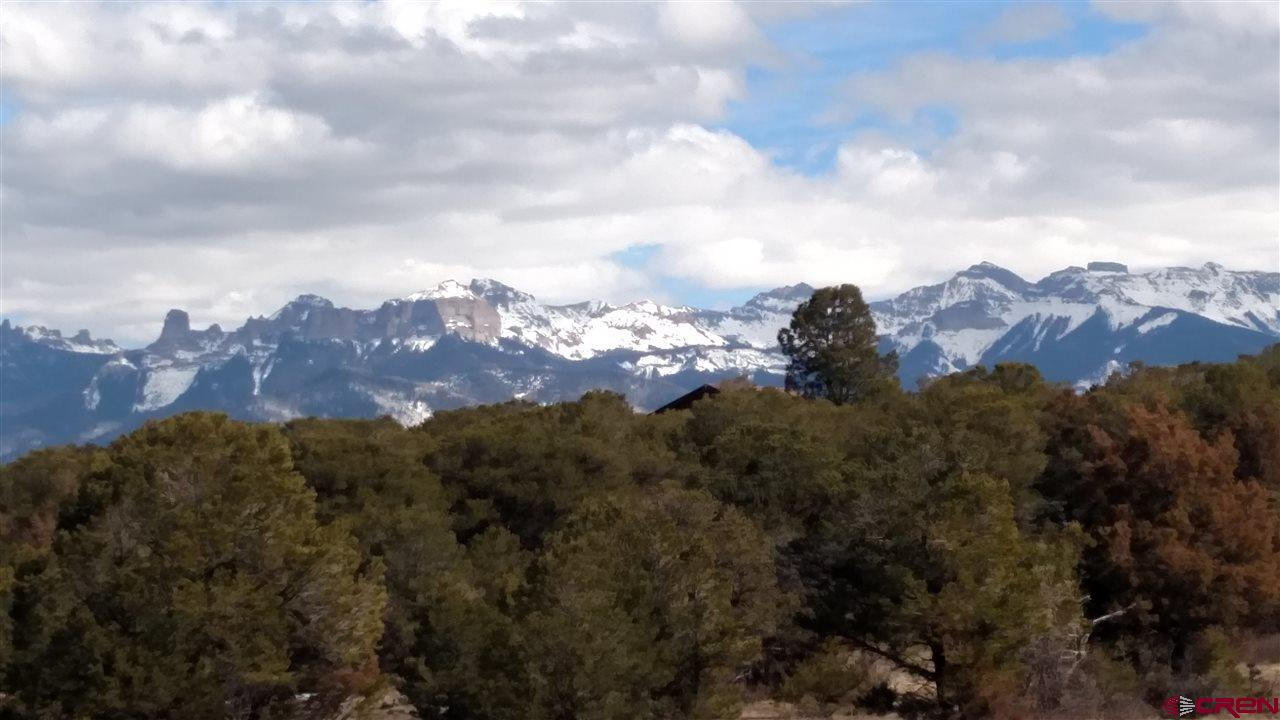 This is a rare 40 acre property 1/4 mile off of Ponderosa Drive just South of Waterview subdivision.  Expansive views of the Cimarron Mountains and some San Juan views possible too.  Covered with beautiful Pinion and Ponderosa trees. Land is gently sloping and easy to build on.  Possible subdivision into a few building sites.  Check with Ouray County Planning.  Dallas Creek Water and SMPA service can be extended from Ponderosa Drive 1/4 mile to the subject property along a deeded easement that is 30 feet wide.  This easement is for access too.