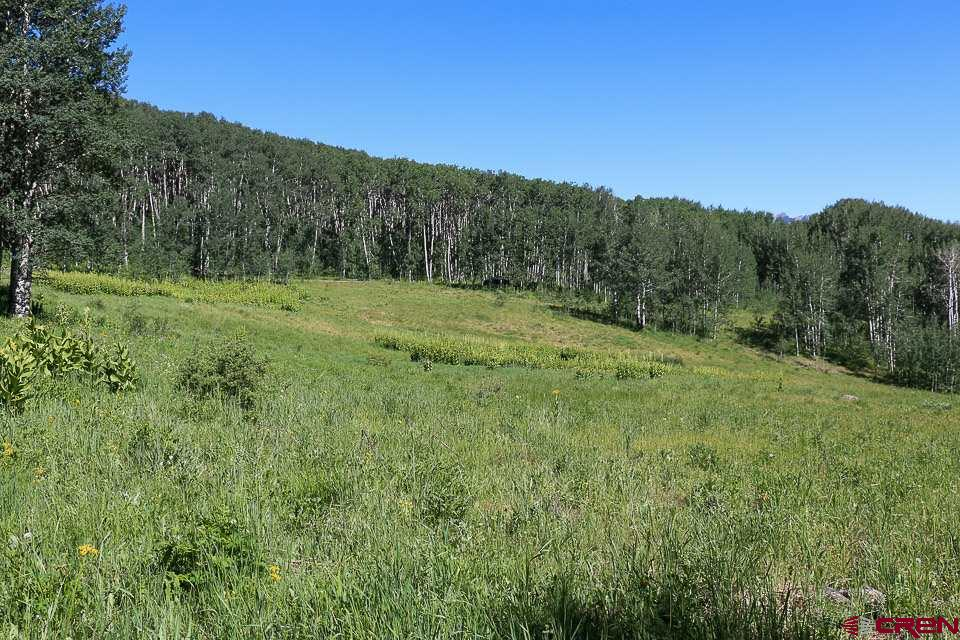 MLS# 757186 - 19 - 25 Wapiti Trail, Crested Butte, CO 81224