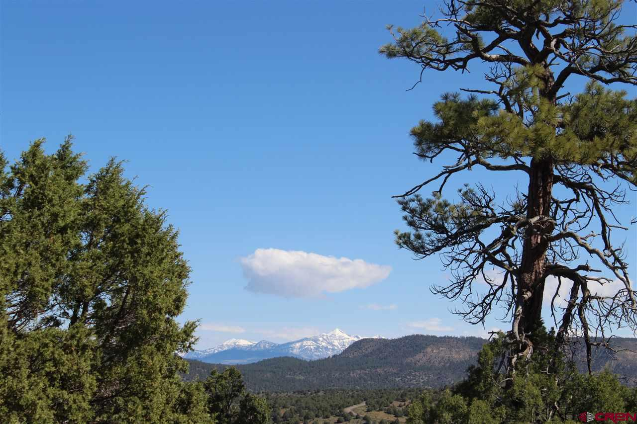 MLS# 757468 - 1 -   South Rockcliff, Pagosa Springs, CO 81147