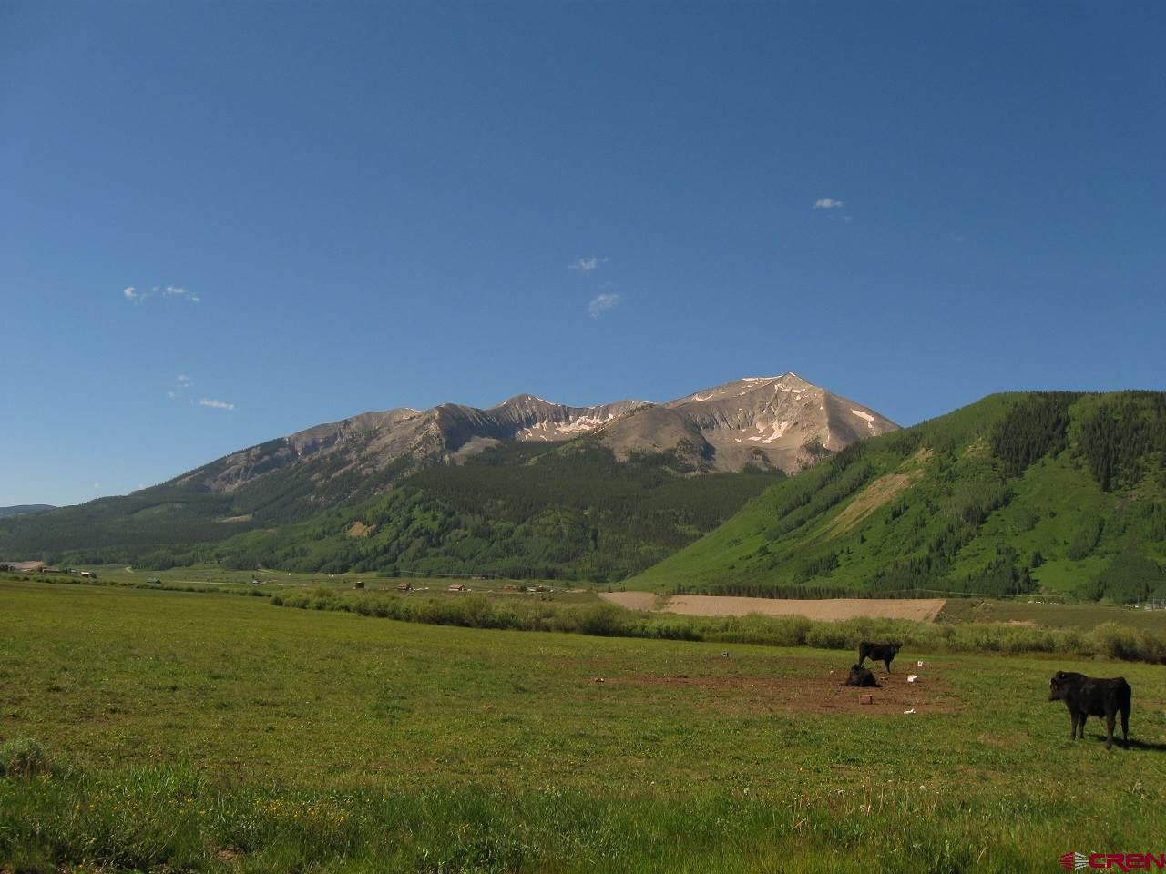 MLS# 757733 - 29 - 341 Mccormick Ranch Road, Crested Butte, CO 81224