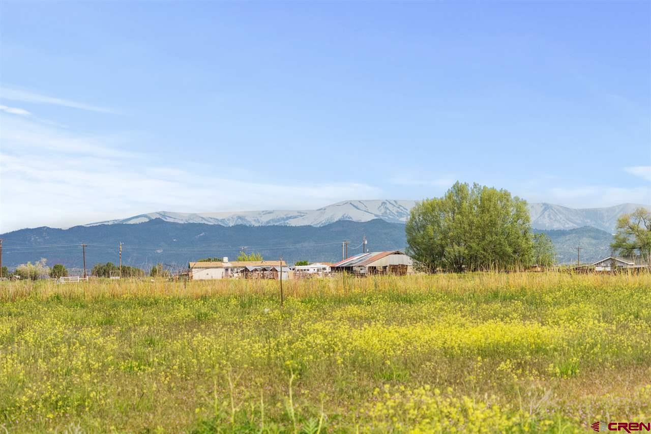 MLS# 757964 - 1 - 7262  Highway 550, Durango, CO 81303