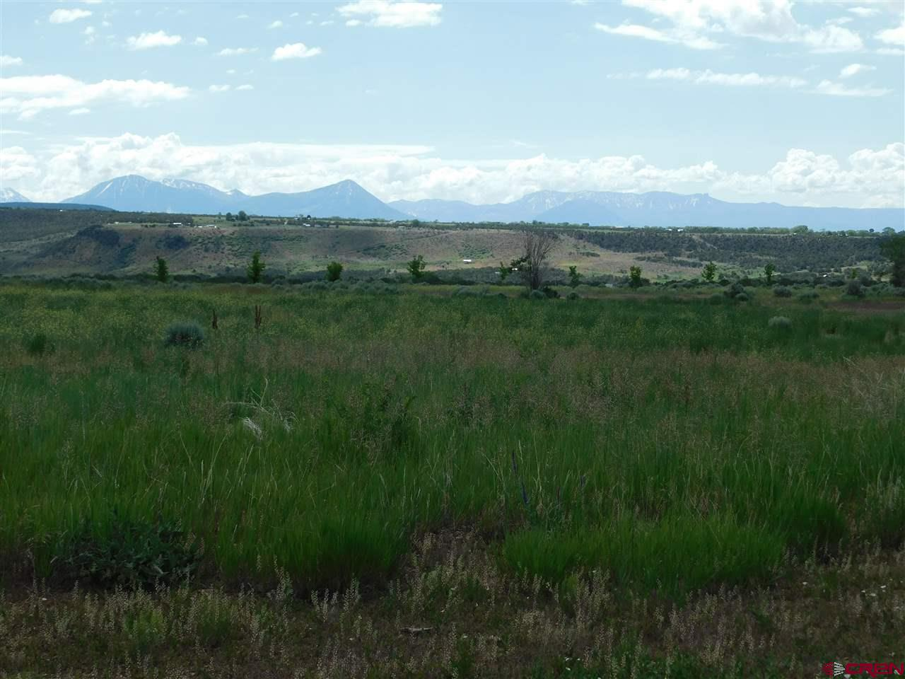 26.24 acre parcel is part of a planned phased subdivision on Cedar Mesa. 10 remaining lots in three remaining phases, the first phase is already sold and built out with nice custom homes. Great country location with amazing views of the Grand Mesa, West Elks and San Juan Mountain range. See associated docs for subdivision plan.