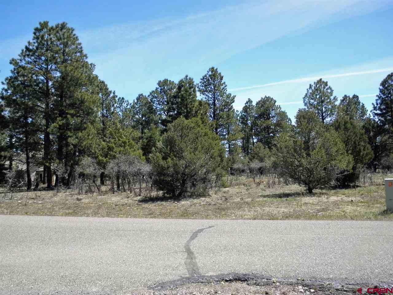 Easy to build almost level with awesome  Mature Ponderosa Pines, covering the property.  Close to the club house and just a short walk to the fairways of 6 and 7 of the course.  A great price for an easy to build lot.  If the trees are trimmed up some views of Sneffels range is possible,