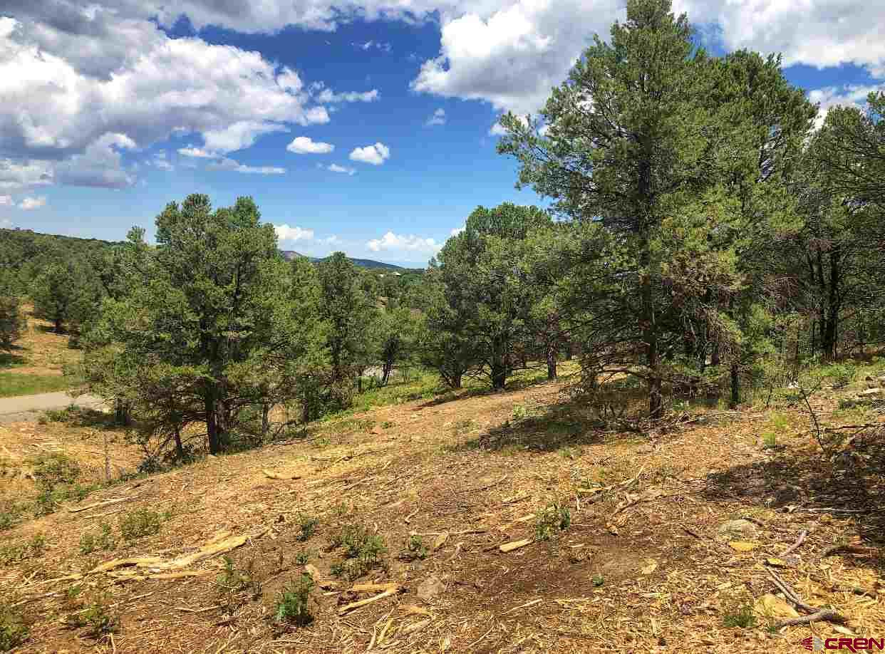 Enjoy the serenity of these exclusive Colorado home sites surrounded by the Rocky Mountains.  Pointe Escape's alpine landscape rises to 8,000 feet with expansive views of Ouray Valley, the San Juan's and Cimarron Mountain Ranges.  Home sites also oversee vast reaches of evergreen National Forest, rolling ranches and the Ridgway Reservior.  Nestled at the Eastern edge of Log Hill, Pointe Escape lots are the last few escarpment properties in the prestigious Log Hill Village subdivision.  The property features are one of a kind from paved road with no through traffic, utilities to each lot line, and the immediate use and access of over 23 acres of natural landscape and trails.  Close to Ridgway, the natural hot springs in Ouray and the world class skiing and shopping in Telluride.  In order to protect your privacy and ensure the best views possible, each lot has a specific building envelope.  Come see your impeccable views of The Cimarron mountain range and revel in four glorious seasons of peace and beauty!