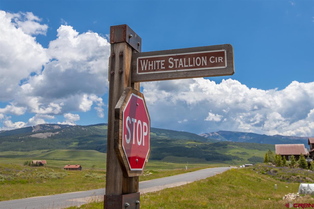 441 White Stallion Circle