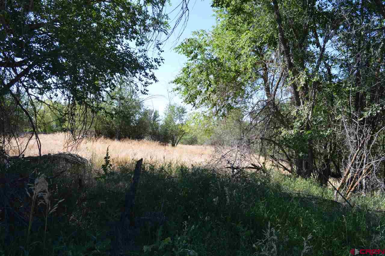 Cheap Land in Colorado - For Sale