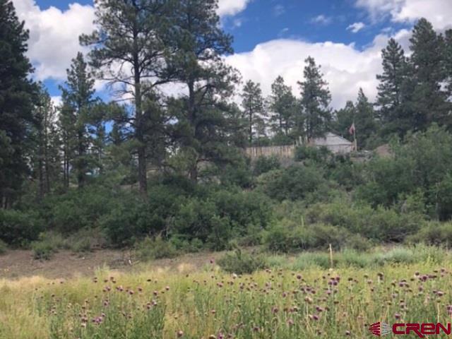 803 Meadow Lark Drive
