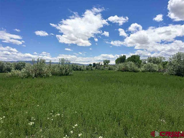 21 Irrigated acres located in the heart of Austin. With 19 shares of Butte Ditch water this great piece of property with the awesome views to build your dream home and have livestock. This is a blank canvas to do what you want!!