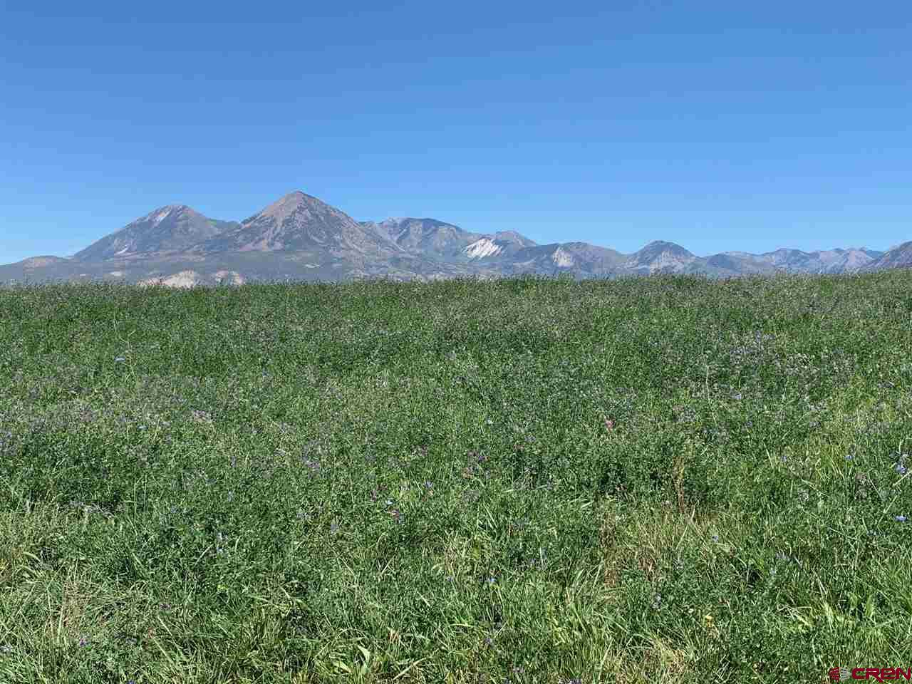 Included are 90 acre feet of Deeded Smith Fork Project Water. Two pivot systems with Senior Water Rights. Good soil. No deed restrictions or covenants. Large hay barn or machine shed, corrals plus sweeping views of the West Elks.
