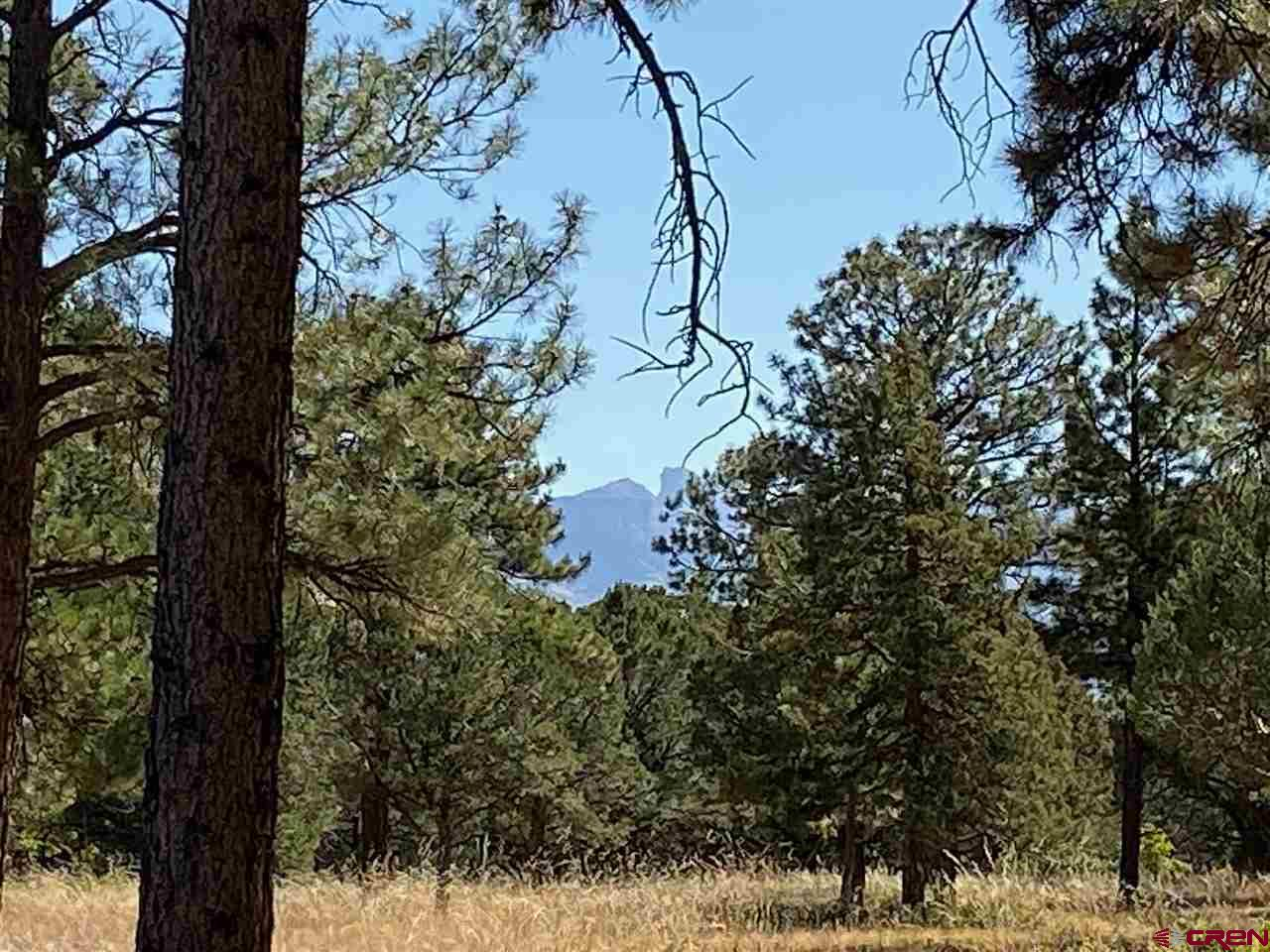 Oversized lot at 5.24+/- acres.  Nice lot with tree mitigation on the lower limbs. Great ground level views of the mountains and mesas and tremendous 2nd story views of the Mountains.  Just a short distance from the Divide Ranch and Club golf course that has unbelievable views from each hole, great clubhouse with bar/restuarant and driving range.  This lot is mostly level with a variety of home sites.  The winter alpen glow on the Cimarron Mountains is something to see!!  The sky turrns red/orange for a delightful experience.  The utilities are:  San Miguel Power to the lot line, Blackhills natural gas to the lot line, land line phone to the lot line and water tap paid and to lot line.  It will need an engineered septic.