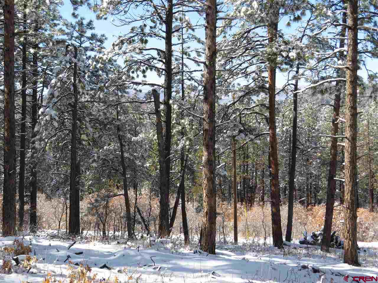 MLS# 764905 - 1 - 2480  Sonlight Place, Pagosa Springs, CO 81147