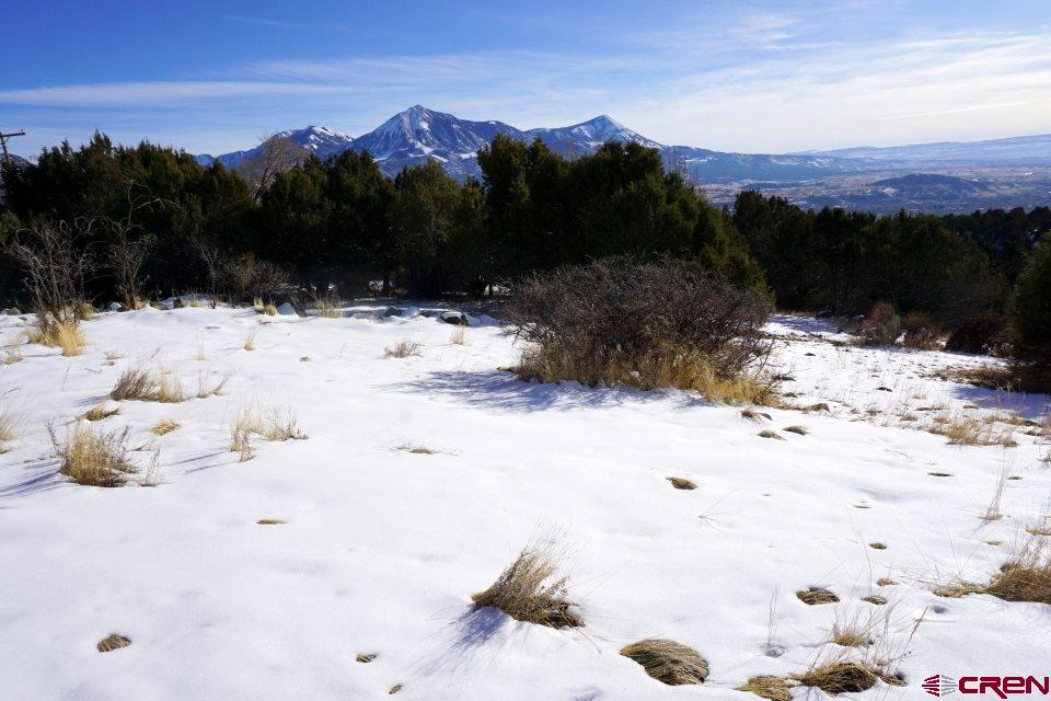 Stellar mountain views included for free with this outstanding location for your new home! High above (but just minutes from) Paonia on Garvin Mesa, the mostly sloping parcel borders BLM and comes with a couple of relatively level building sites and an old foundation. Also included are one share of Terror Ditch and a well permit (buyer will need to drill the well). Adjoins another parcel listed by the Lario Team: see MLS #760355.