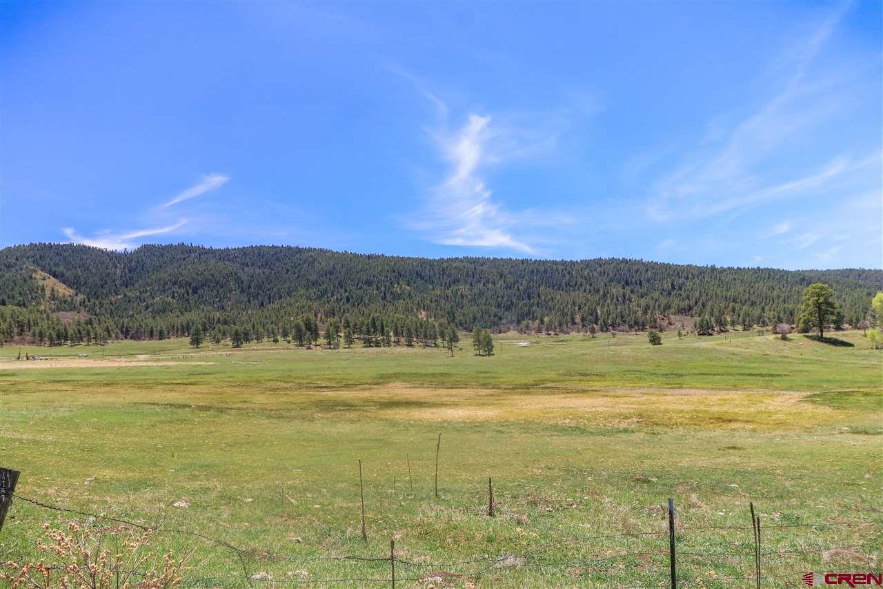 MLS# 765062 - 1 - 17774  Hwy 84, Pagosa Springs, CO 81147