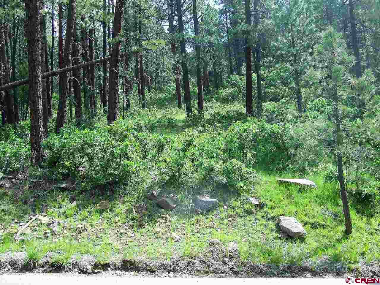 MLS# 765107 - 1 - 294  Hillside Drive, Bayfield, CO 81122